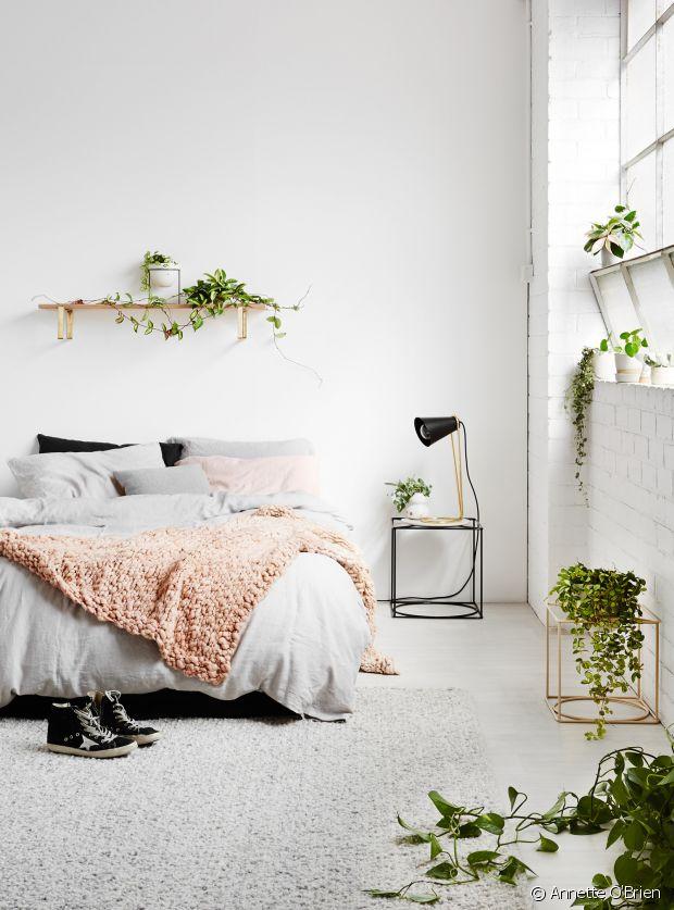 Plantes Vertes Dans Sa Chambre  Bonne Ou Mauvaise Ide