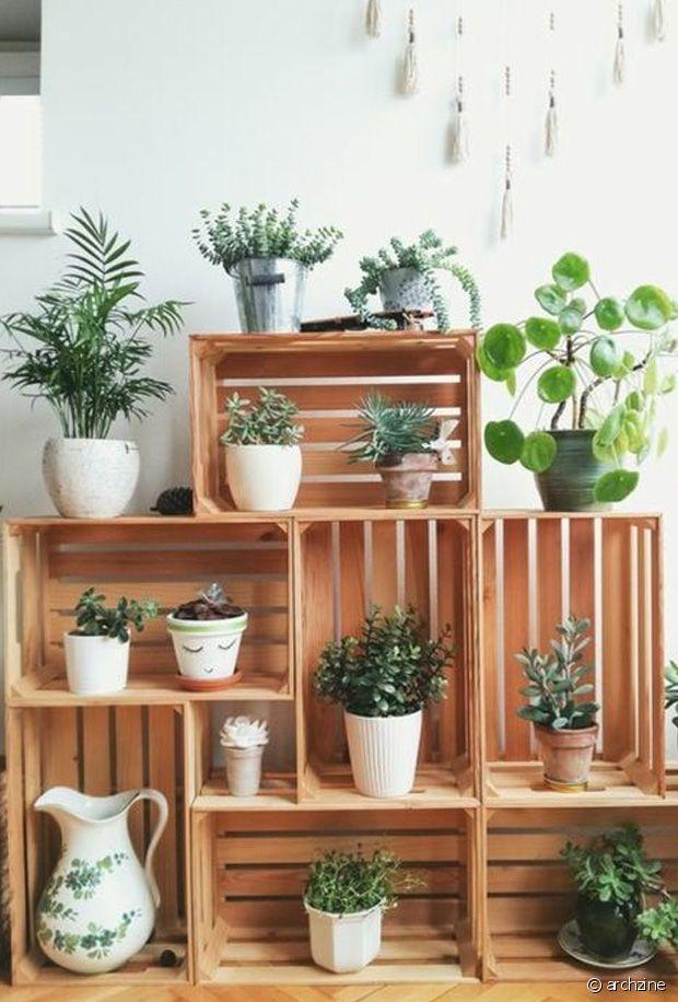 Tellement joli pour exposer vos plantes préférées !